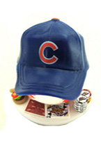 CHICAGO CUBS CARD PROTECTOR