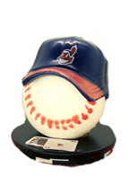 CLEVELAND INDIANS CARD PROTECTO